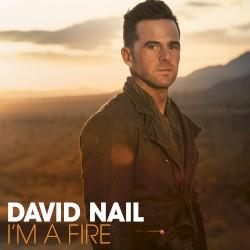 David Nail - The Secret (Acoustic)