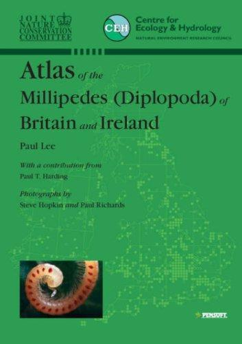 Atlas of the Millipedes (Diplopoda) of Britain And Ireland (Faunistica) by P. Lee